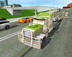 Euro truck driving sim